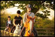 Find Quality Horse Riding Lessons in Kildare